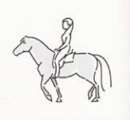 paard-transport